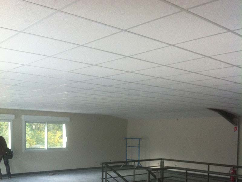 Ds couchet am nagement de locaux professionnels et de for Faux plafond demontable